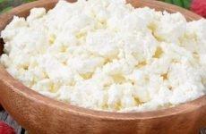Сир при гастриті: як правильно їсти, користь