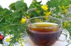 Відвари від виразки шлунка: рецепти, протипоказання