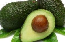 Авокадо при гастриті: правила вживання, рецепти