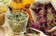 Трави при підвищеній кислотності шлунка: ефективність