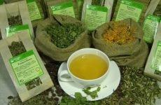Ефективність монастирського чаю при лікуванні гастриту і схема його прийому