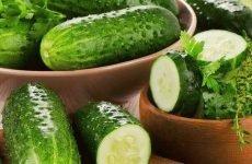 Можна їсти огірки при виразці шлунка: свіжі, мариновані