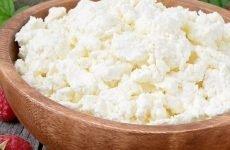 Скільки в шлунку перетравлюється сир і які властивості сиру?