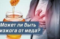 Мед при печії: народні рецепти, лікування, причини печії