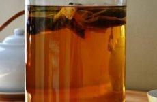 Чайний гриб для шлунка: користь, протипоказання