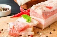 Сало при гастриті: чи можна їсти, склад, користь