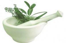 Лікування ерозивного гастриту шлунка народними засобами, маслами і травами