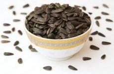 Можна їсти насіння при гастриті шлунка чи ні?
