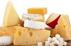 Можна їсти сир при гастриті шлунка або не можна?