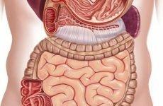 Непрохідність шлунку: симптоми, дієта, причини