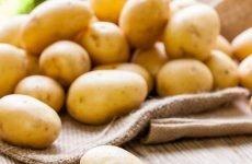 Можна картоплю при виразці шлунка: користь, протипоказання