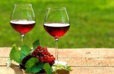 Можна пити вино при гастриті шлунка чи ні?