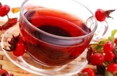 Шипшина при виразці шлунка: чи можна пити, обмеження