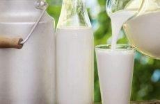 Молоко при гастриті: користь і шкода, прості рецепти