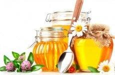 Можна їсти мед при гастриті і як з його допомогою лікувати шлунок?