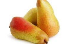 Можна їсти грушу при гастриті шлунка і в якому вигляді?