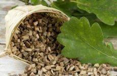 Кора дуба при діареї: спосіб застосування