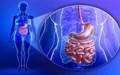 Причини фундального гастриту шлунка і правила його лікування