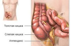 Болить живіт і температура: симптоми якоїсь хвороби, причини, лікування