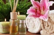 Ефірні масла для масажу: ціна, відгуки, види, рецепти, застосування