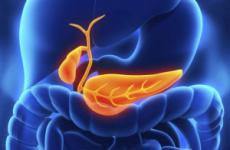 Які аналізи потрібно здати при холециститі: калу, крові, сечі, дуоденальне зондування