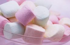 Які солодощі можна при панкреатиті: мед, шоколад, варення, зефір, морозиво, мармелад