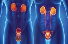Хронічний уретрит у чоловіків і жінок: причини, симптоми, діагностика, лікування