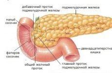 Кіста підшлункової залози: що це таке, симптоми, лікування