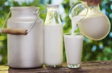 Можна молочні продукти при панкреатиті: сир, сир, йогурт, сметана, сирники, сироватка