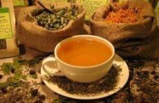 Народні засоби від остеохондрозу: які пити збори трав для лікування