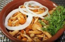 Отруєння маринованими грибами – симптоми та можливі наслідки, термін придатності консервованих грибів