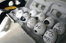 Отруєння яйцями – симптоми і лікування, можна їсти варені яйця при отруєнні іншими продуктами