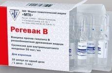 Щеплення від гепатиту У дорослих: схема вакцинації, графік, препарати, протипоказання, побічні ефекти
