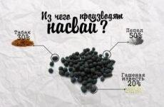 З чого складається насвай — ознаки вживання та лікування залежності, заборонений чи насвай в Росії