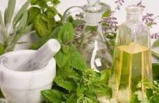 Рецепти і способи лікування ВСД народними засобами
