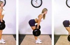 Найкращі вправи для прокачування спини в залі
