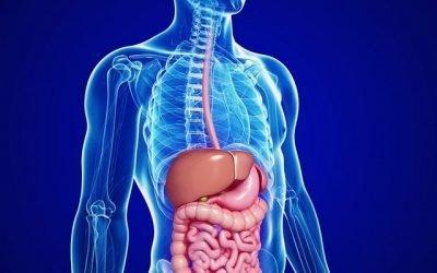 Існуючі види гастриту шлунка та методики їх класифікації