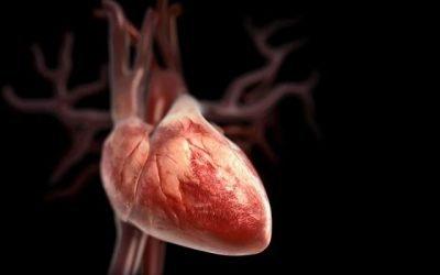 Види, причини і лікування аортального пороку серця