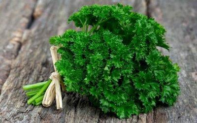 Вітаміни в петрушці: зміст, користь для здоров'я, показання