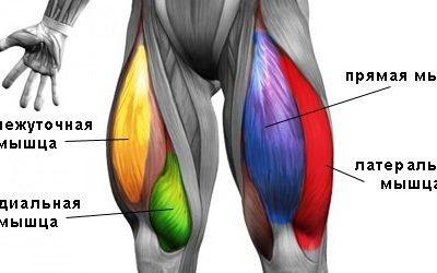 Біль у м'язах стегна — причини і лікування, що робити при сильному болі в лівому або правому стегні що віддає в ногу