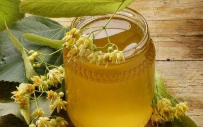 Липовий мед: корисні властивості і протипоказання