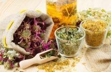 Трави для кишечника: які засоби найбільш ефективні