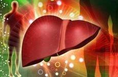 Тюбаж з шипшиною і сорбітом: ефективна чищення печінки