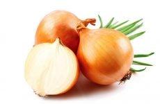 Вітаміни в цибулі ріпчастій, корисні властивості та вплив на здоров'я
